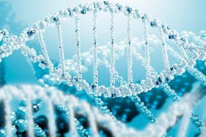 Seed-Finanzierung für die Peptid-Herstellung