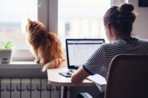 Frau im Homeoffice, Katze auf der Heizung. Bitkom vermutet, dass mehr Leute im Homeoffice arbeiten werden.