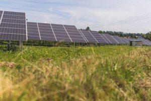 EnBW Solarpark Ingoldingen