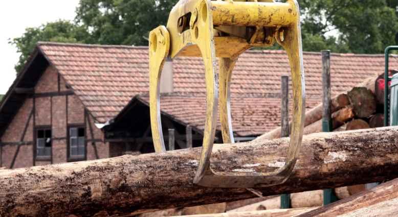 Holz- und Papierindustrie