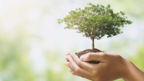 Für Verbraucher wird der Umweltschutz immer wichtiger. Viele glauben, dass IKT zur Problemlösung beitragen wird. Bild: lovelyday12 via Adobe Stock