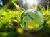Klimaschutz-Anstrengungen Weltkugel Studie KPMG