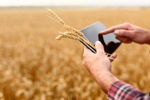 Landwirtschaft 4.0: Farmen werden digital