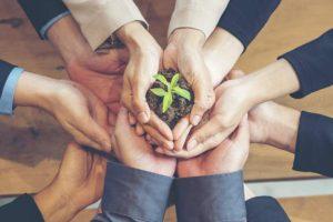 VW Microsoft Zusammenarbeit Nachhaltigkeit Klimawandel